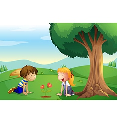 A girl and a boy watching the plant grow vector image