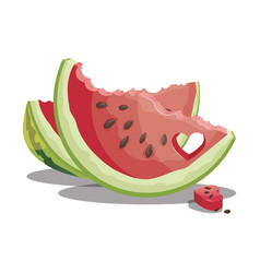 cartoon bite a piece of watermelon slice of vector image