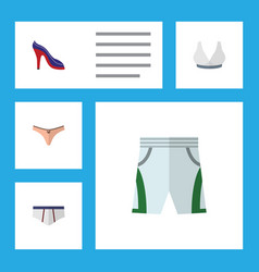 Flat icon garment set of lingerie brasserie vector