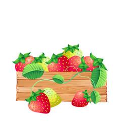fruit icon strawberry white background imag vector image