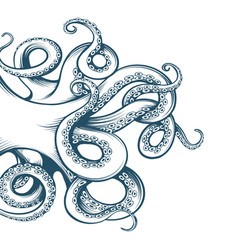 Hand drawn octopus tentacles vector