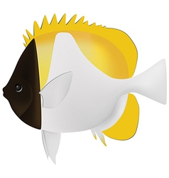 Pyramid butterflyfish vector