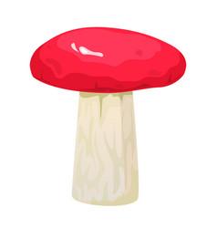Russula edible mushroom vector
