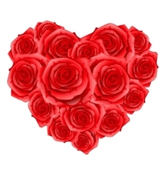 Heart of red realistic roses Happy Valentine day vector image
