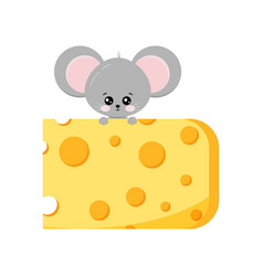 Cute mouse climb up on piece cheese flat vector