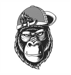 gorilla wearing a hat vector image