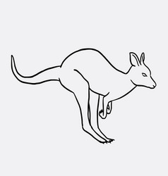 Kangaroo animal sketch vector