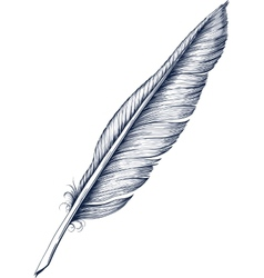 Feather pen Royalty Free Vector Image - VectorStock