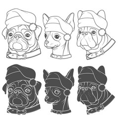 set with dogs in christmas hats vector image