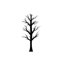 silhouettes of a tree without leaves vector image