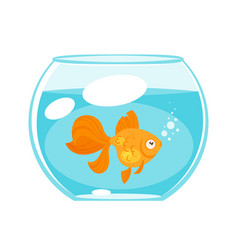 animal pet - gold fish vector image