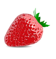 beautiful strawberries of a realistic vector image