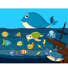 Ocean scene with sea animals vector image