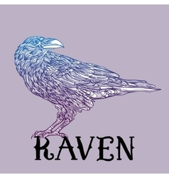 bird raven zentangle style Good for T-shirt bag vector image