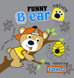 cute bear animal cartoon vector image