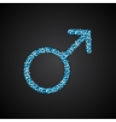 Gender Men Blue Sequins Icon vector image