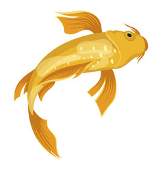 Koi fish icon japan golden water symbol vector
