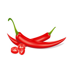 Red hot sliced chili pepper realistic style vector