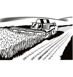 Ripe wheat field with harvester vector