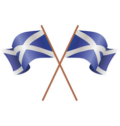 two flag of scotland vector image