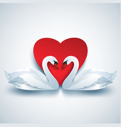 Valentine background with two white 3d swans and vector