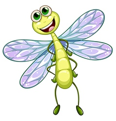 A smiling dragonfly vector image vector image