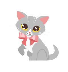 animal pet - cute cat vector image vector image
