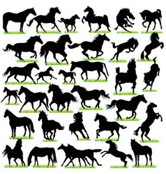 Horses Silhouettes Set vector image vector image