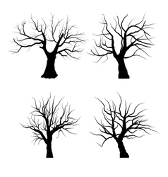 Collection Set of Trees Silhouettes isolated vector image