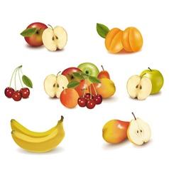 big group of sweet fruit vector image