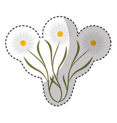 cute flower garden isolated icon vector image