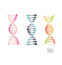 dna molecule sign set genetic elements and icons vector image