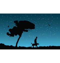 night walk vector image