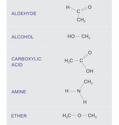 Organic chemical functions vector
