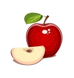 Red apple with leaf and clove vector
