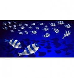 Shoal of fish vector