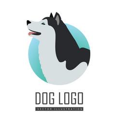 dog logo husky or alaskan malamute isolated vector image
