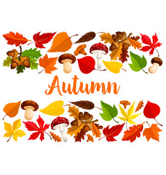 autumn falling leaf forest mushrooms poster vector image vector image