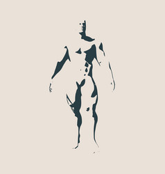 bodybuilder silhouette isolated vector image vector image