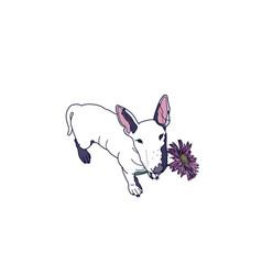 Bull terrier dog vector