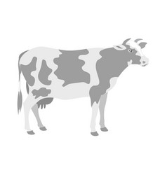 cow standing view profile white background vector image