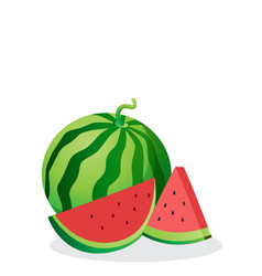 Fruit icon watermelon white background imag vector