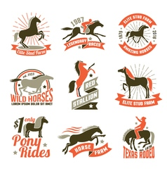Horse breeding labels emblems set vector