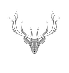 stylized deer on white background portrait a vector image