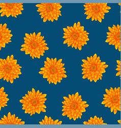 yellow chrysanthemum on indigo blue background vector image