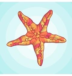 Zentangle starfish sketch Ocean abstract vector image