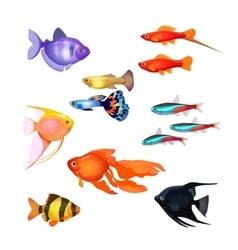 Set of aquarium fish Realistic and fairytale vector image vector image