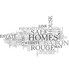 baton rouge homes for sale text word cloud concept vector image vector image