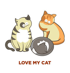 cute cats pets or kittens playing or posing vector image