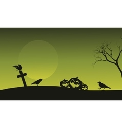 Silhouette of pumpkin and crow in tomb Halloween vector image vector image